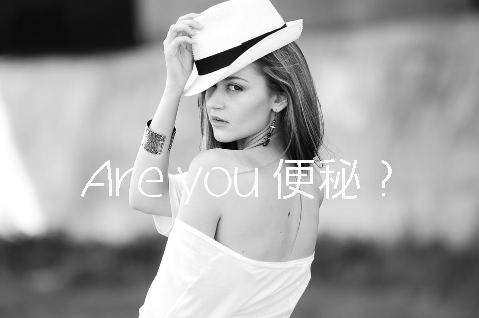 f:id:gurikenblog:20170208203341j:plain