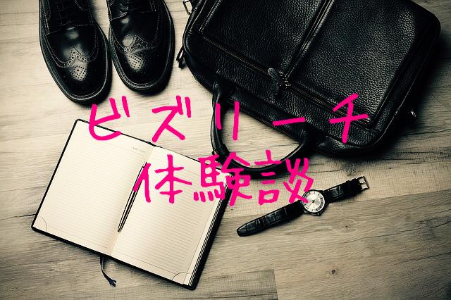 f:id:gurikenblog:20170415013230j:plain
