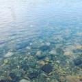 揺らぐ川面