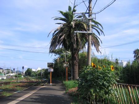 日南線青島駅ホーム