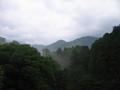 [宮崎]高千穂町岩戸地区 岩戸川上流をのぞむ