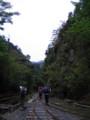 [屋久島]荒川登山口