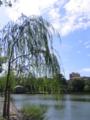 [奈良]猿沢池