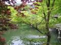 [京都]永観堂