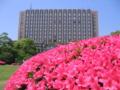 [新宿区]大隈庭園