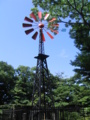 フランス山 風車