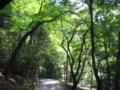 [奈良]若草山へ