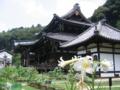 [京都]三室戸寺