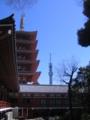 [台東区]浅草寺