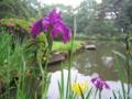 [文京区]新江戸川公園
