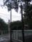 早稲田の街灯