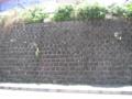 [ブラタモリ]中央線石積み