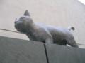猫の家あと