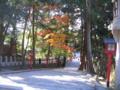 [京都]吉田山