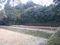 [四国]栗林公園