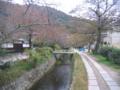 [京都]哲学の道