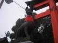 [京都]伏見稲荷