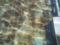 日比谷公園