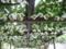 笛吹川フルーツパーク
