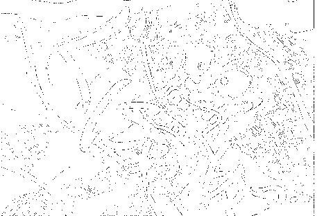 f:id:guuma:20170412232418p:plain