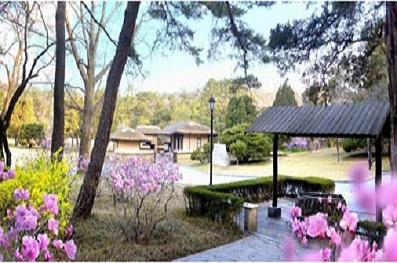 f:id:gwangzin:20200412160401j:plain