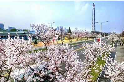 f:id:gwangzin:20200412160417j:plain