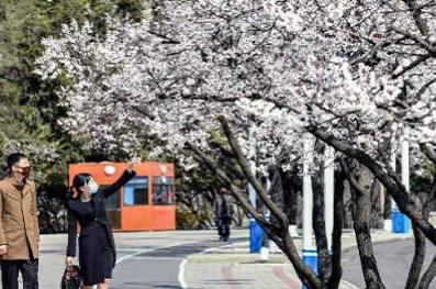 f:id:gwangzin:20200412160503j:plain