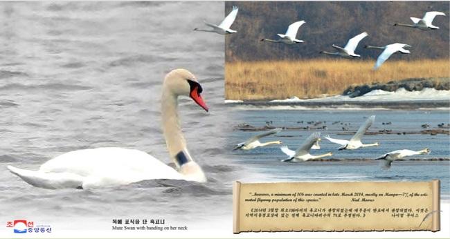 f:id:gwangzin:20200808180258j:plain