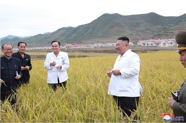 f:id:gwangzin:20201002124543j:plain