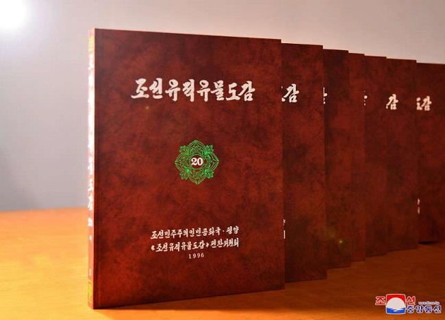 f:id:gwangzin:20201205002302j:plain