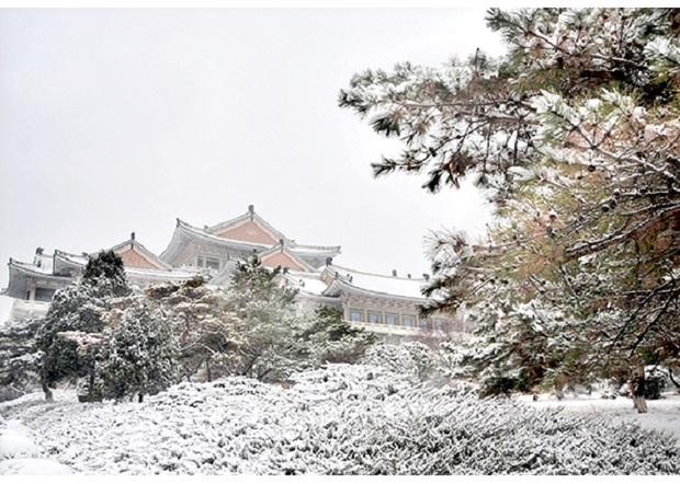 f:id:gwangzin:20201214183806j:plain