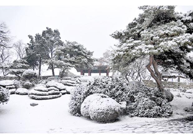 f:id:gwangzin:20201214183852j:plain