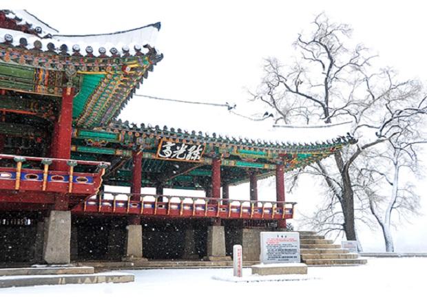 f:id:gwangzin:20201214183911j:plain