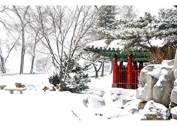f:id:gwangzin:20201214183929j:plain