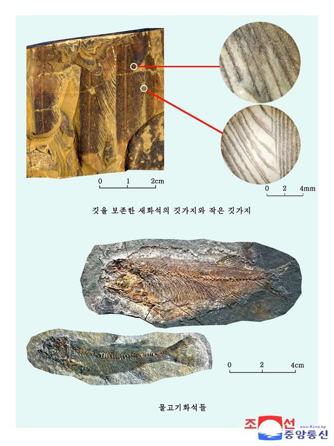 f:id:gwangzin:20210220123521j:plain