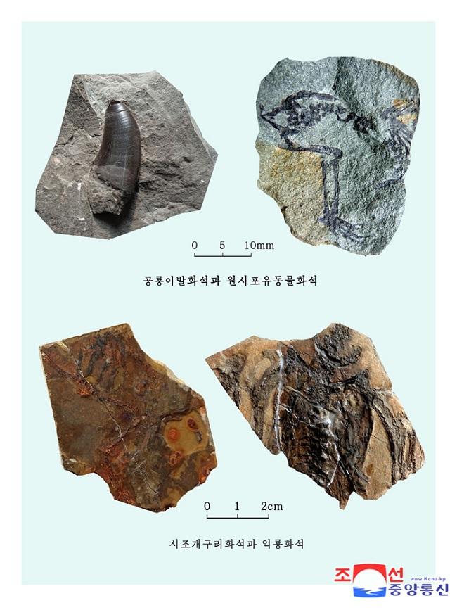 f:id:gwangzin:20210220123629j:plain
