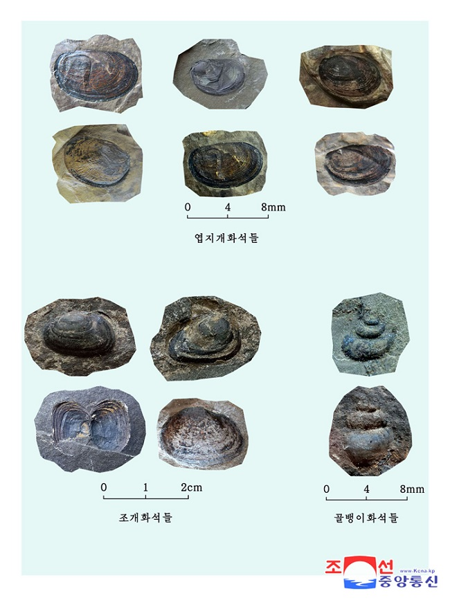 f:id:gwangzin:20210220123815j:plain