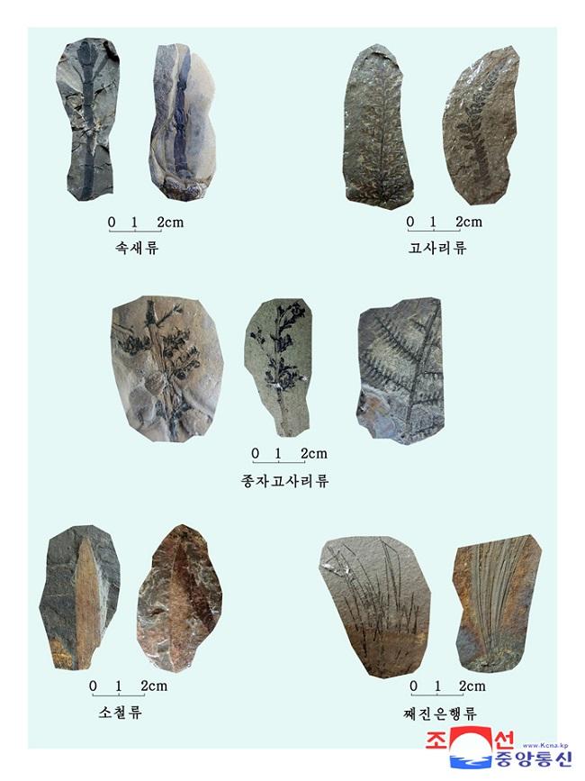 f:id:gwangzin:20210220123853j:plain