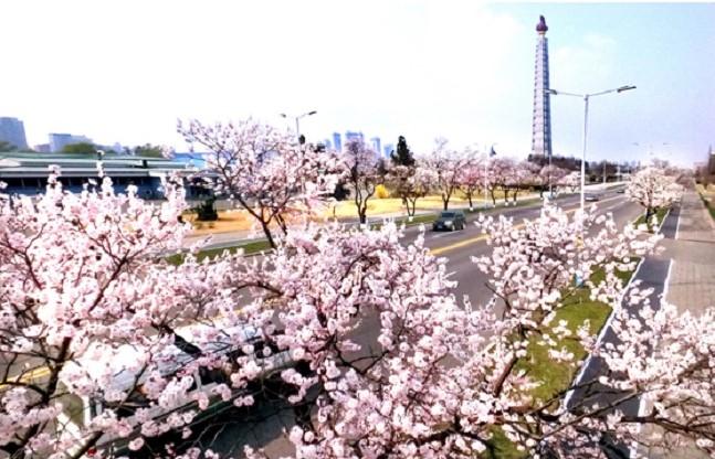 f:id:gwangzin:20210411131248j:plain