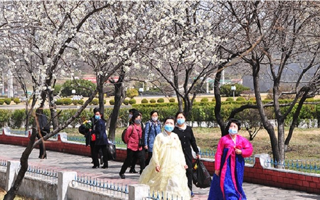 f:id:gwangzin:20210411131306j:plain