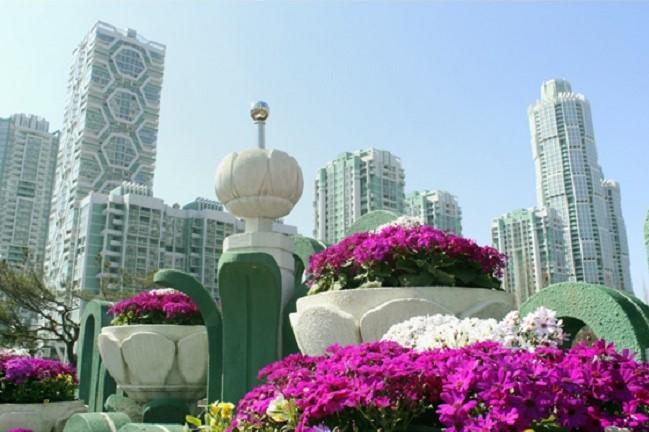 f:id:gwangzin:20210411131340j:plain
