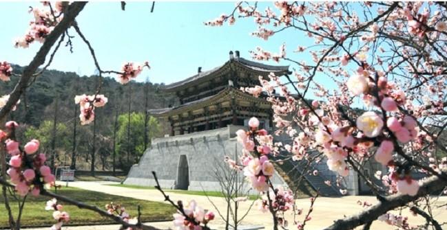 f:id:gwangzin:20210411132315j:plain