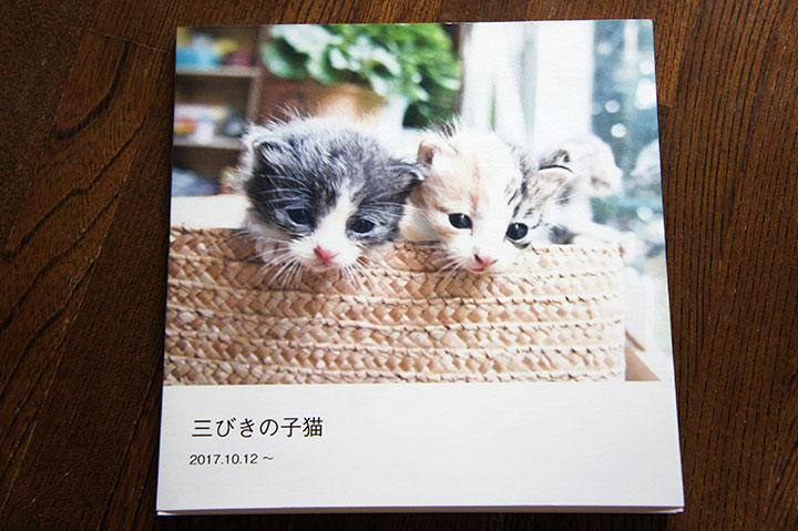 f:id:gyamako:20180211161416j:plain