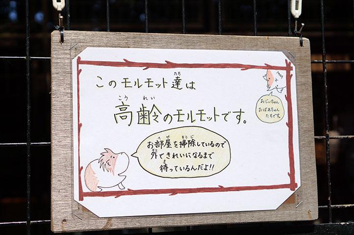 f:id:gyamako:20180525144635j:plain