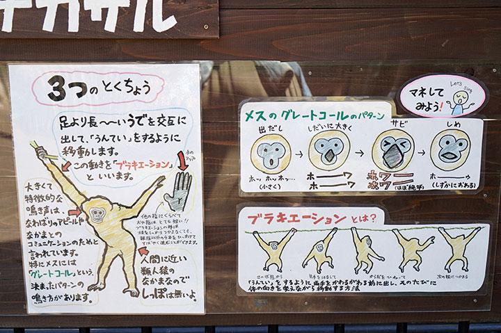 f:id:gyamako:20180525150159j:plain