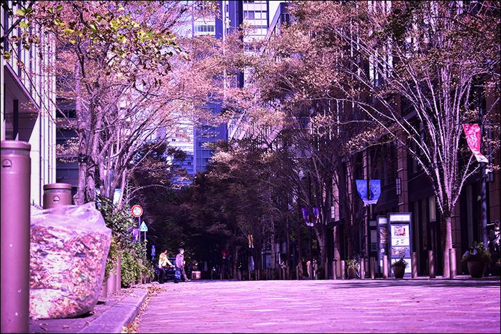 f:id:gyamako:20181115161316j:plain