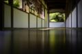 『京都新聞写真コンテスト 床の新緑』