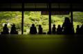『京都新聞写真コンテスト 新緑色の畳』