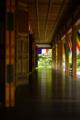 『京都新聞写真コンテスト  新緑色の床』