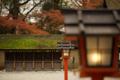 『京都新聞写真コンテスト 河合神社に冬近し』